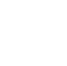 logo ta-travelers-choice